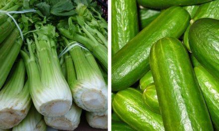 Detox smoothie řapíkatý celer – okurka