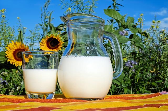 Mléko a jeho alternativy: udělejte si konečně jasno